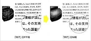 L_kosesai_0208_img01.jpg
